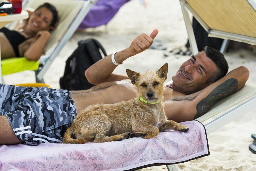 vacanze dog friendly