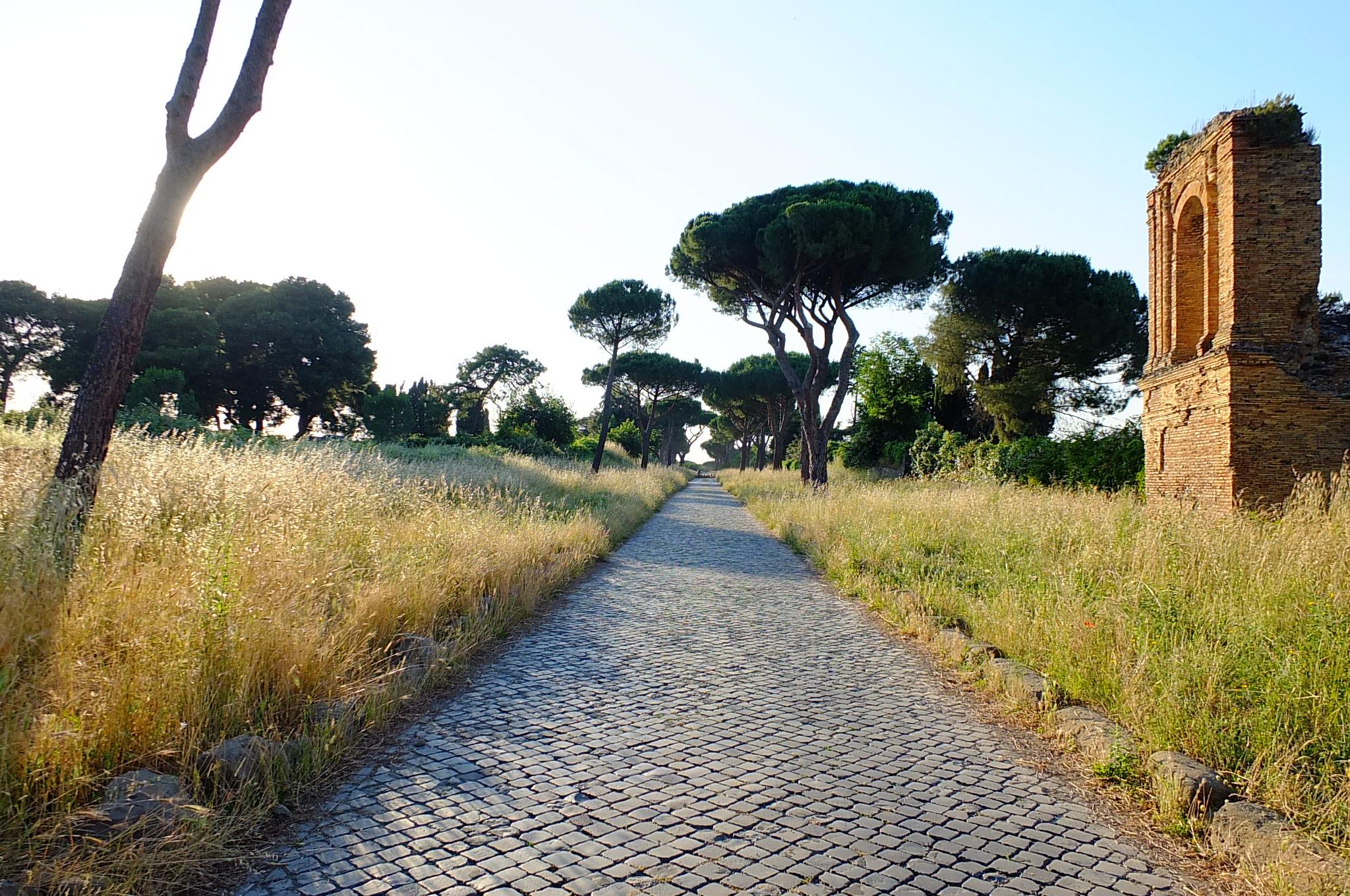parchi a roma piccoli paradisi nel cuore della citt