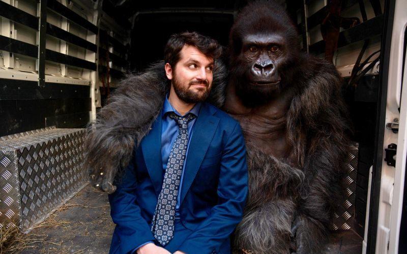 Attenti al gorilla - foto di Andrea Pirrello