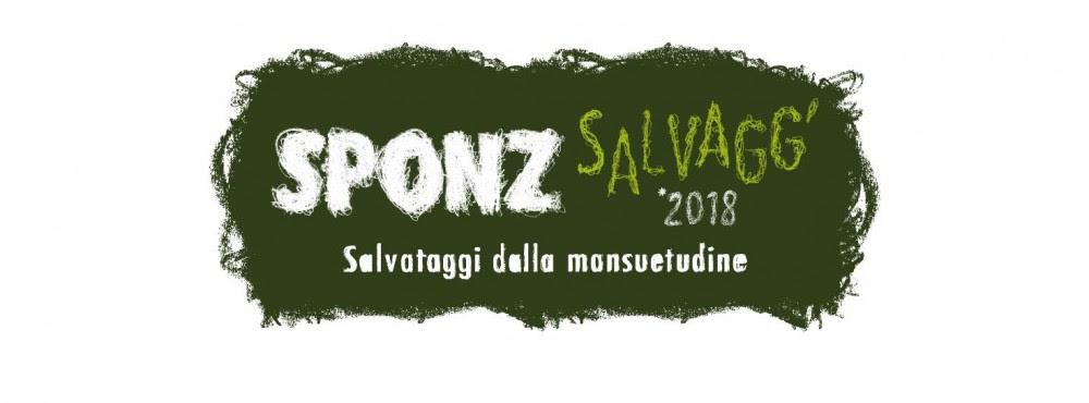 Sponz Fest 2018