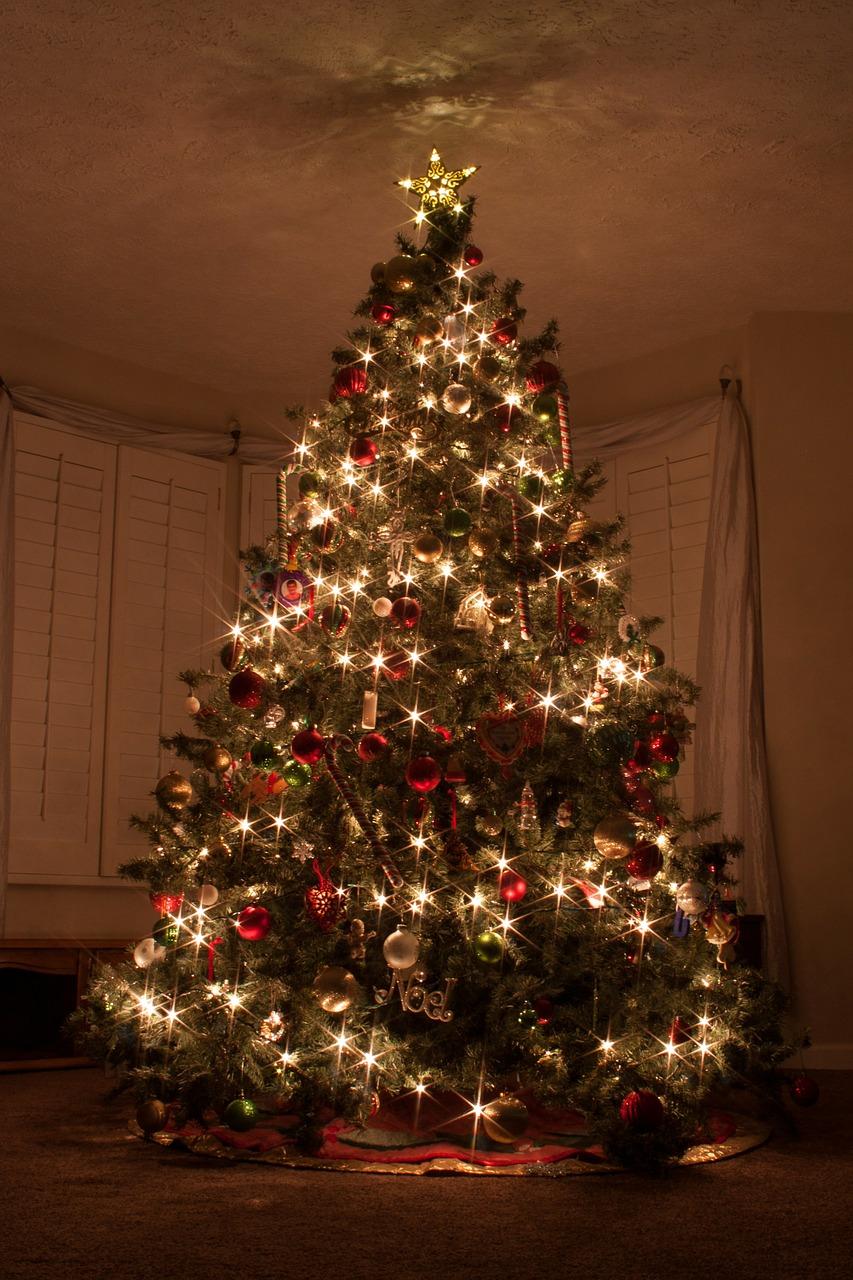 Alberi Di Natale Bellissimi.Alberi Di Natale Particolari 7 Consigli Per Creare Quello Giusto Snap Italy